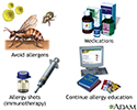 Introduction to allergy treatment